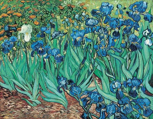 iris - van Gogh.jpg